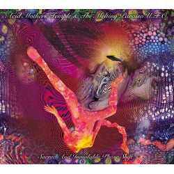 Acid Mothers Temple & The Melting Paraiso UFO - Sacred And Inviolable Phase Shift (CD)